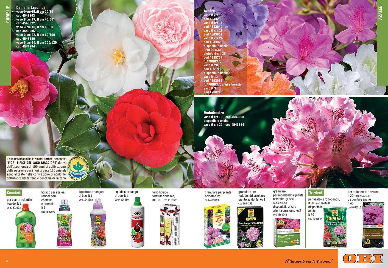 Pagina_8-9.jpg