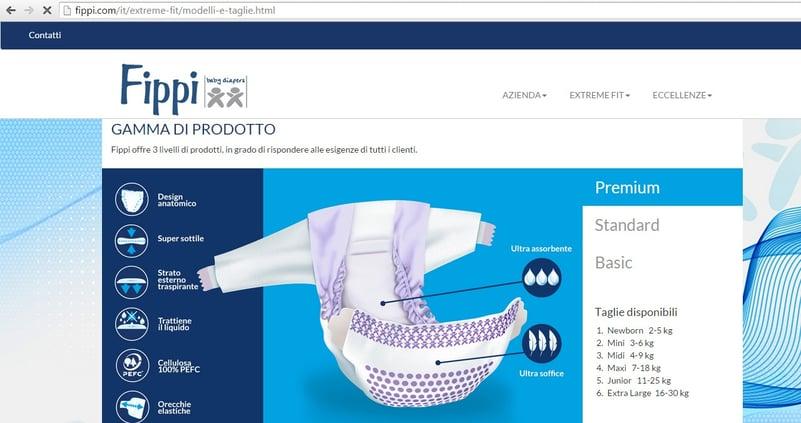Sito fippi digital OFG Advertising_agenzia_di_comunicazione_a_milano.jpg