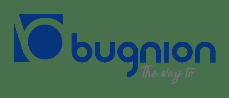 logo_or_blu